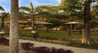 Jungle Safari Lodge – Chitwan